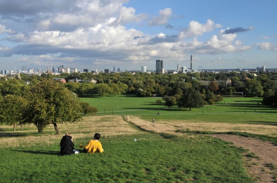 primrose-hill-see-do-parks-gardens-large.jpg