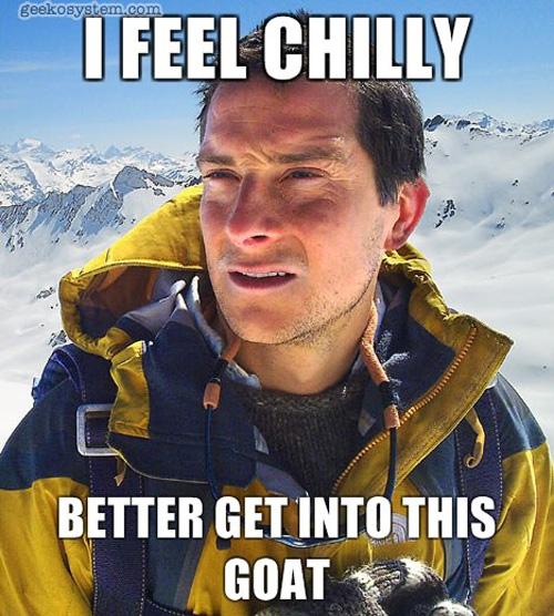 bear-grill-chilly.jpg